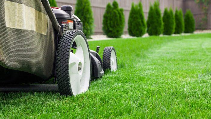 Home Maintenance - Lawn Mower on Green Grass