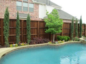 Outdoor features - landscaping surrounding pool